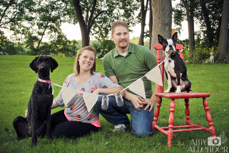 baby Baby Announcement With Dogs