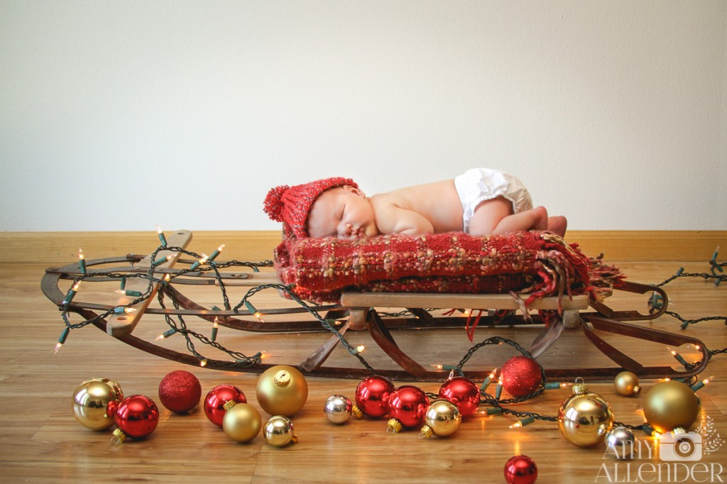 new born christmas session