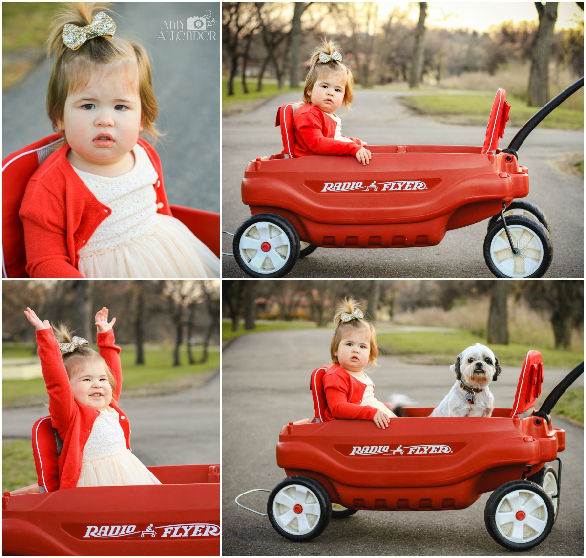 radio flyer baby portraits