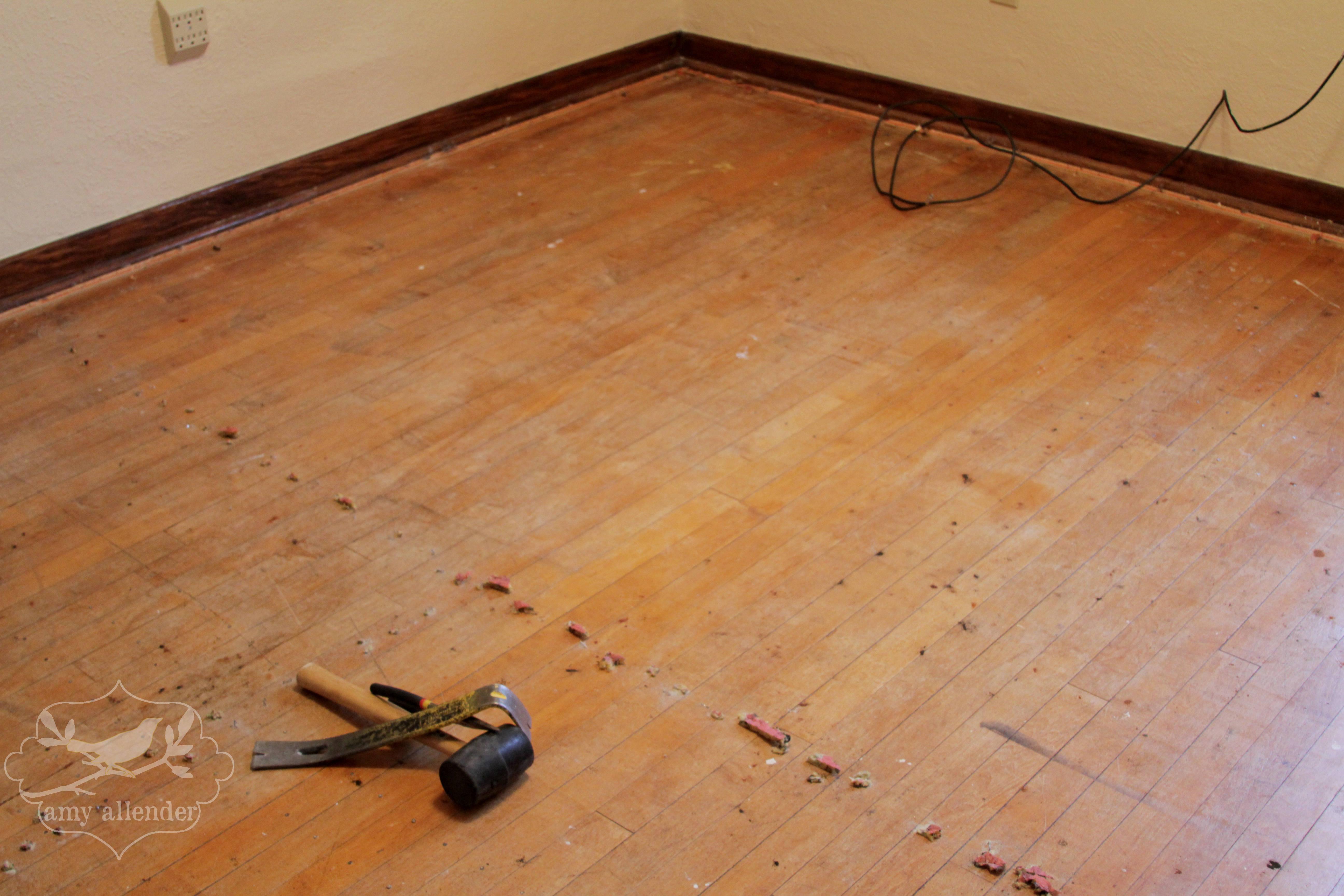 The Last Bad Carpet Amy Allender Dot Com