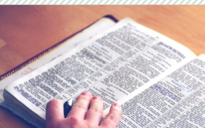 5 Bible Reading Strategies I Love and Recommend